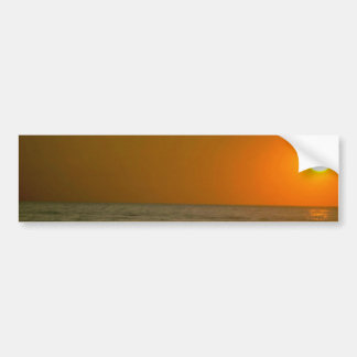 Seagull Flying Over Water Bumper Sticker