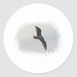 Seagull flying overhead round stickers