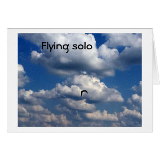 "SEAGULL FLYING ""SOLO"" - AND MISSING ""YOU"" CARD"
