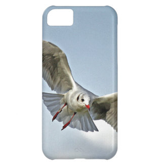 Seagull Flying with Wings Spread Cover For iPhone 5C
