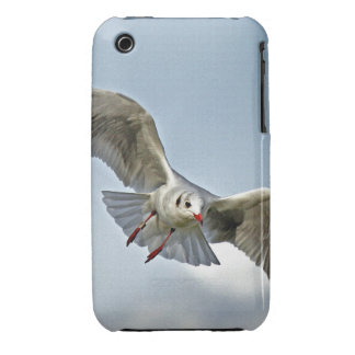 Seagull Flying with Wings Spread Case-Mate iPhone 3 Case