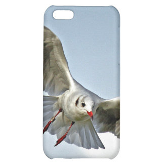 Seagull Flying with Wings Spread Case For iPhone 5C