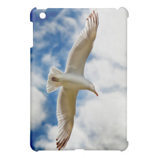 Seagull gliding in flight close up with blue skies cover for the iPad mini