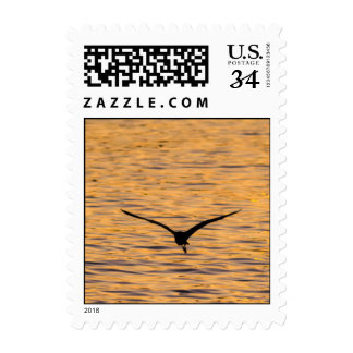 Seagull Gliding over Golden Sea Postage Stamp
