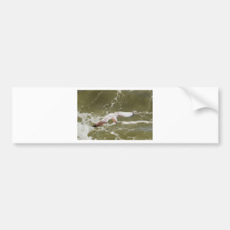 Seagull Gliding Over The Waves Car Bumper Sticker