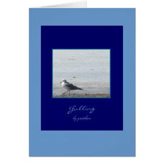 Seagull Gulling Greeting Card