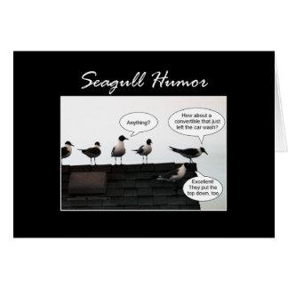 Seagull Humor Greeting Card