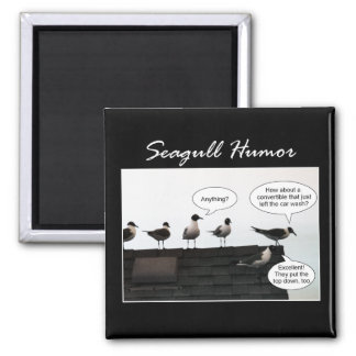 Seagull Humor 2 Inch Square Magnet
