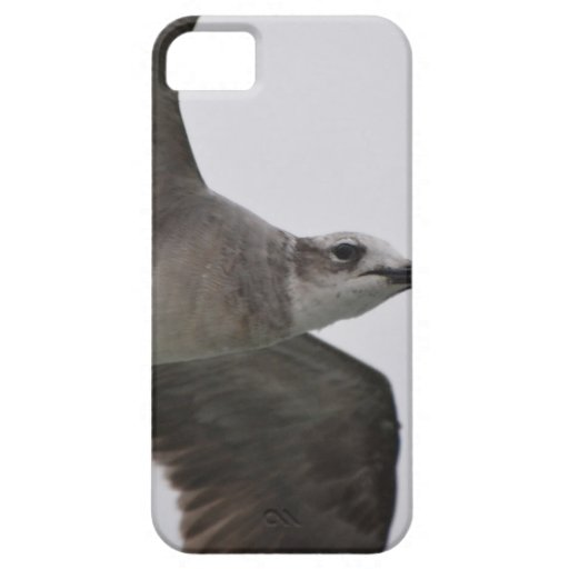 Seagull In Flight iPhone 5 Covers