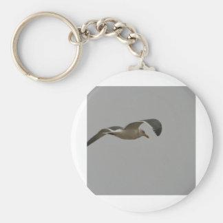 Seagull in Flight Keychain
