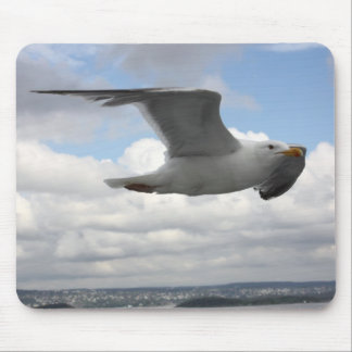 Seagull in Flight Over Norway Mouse Pad
