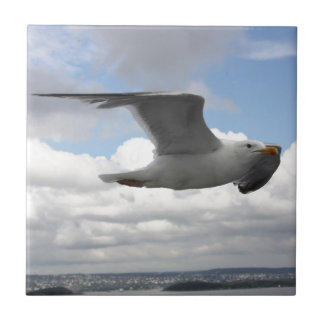 Seagull in Flight Over Norway Tile