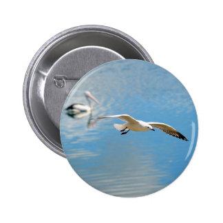 Seagull In Flight - Pelican on Water Pinback Button