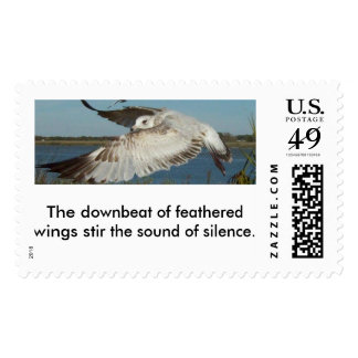 Seagull in Flight Postage Stamp