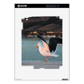 Seagull iPad 2 Decals