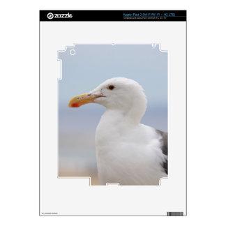 Seagull iPad 3 Skin