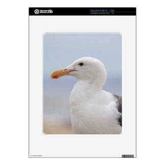 Seagull iPad Decal