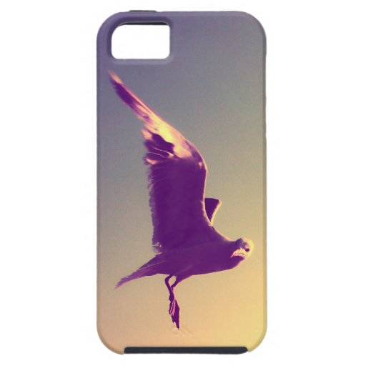 seagull iPhone 5 cover