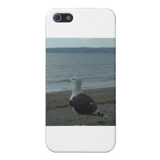 SEAGULL iPhone 5 COVERS