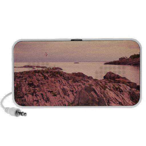Seagull Island Laptop Speaker