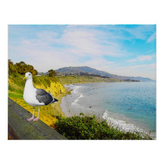 Seagull Island Poster