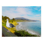 Seagull Island Print
