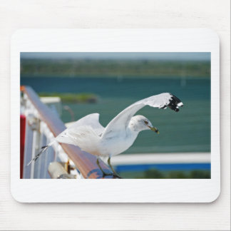 Seagull.JPG Mouse Pads
