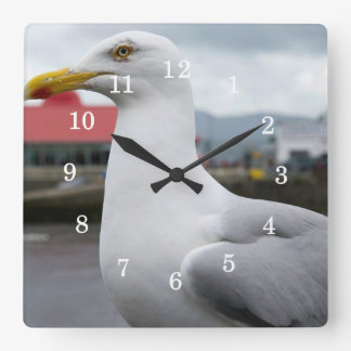 Seagull Keeping An Eye On You Square Wall Clock
