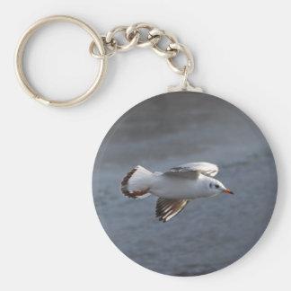 Seagull Key Chains