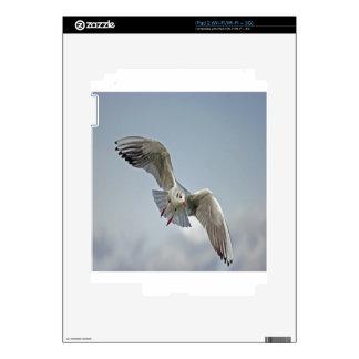 Seagull lake balaton nature design skin for iPad 2