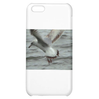 Seagull Landing in the Potomac River iPhone 5C Cases