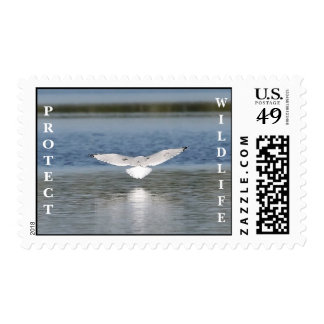 Seagull Landing Protect Wildlife Stamp