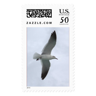 Seagull Large Postage Stamp