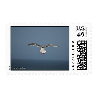 Seagull Leaves Stamp