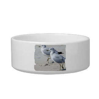 Seagull March Cat Water Bowl