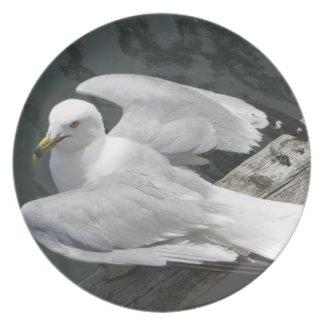 Seagull Melamine Plate