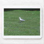 Seagull Mouse Mat