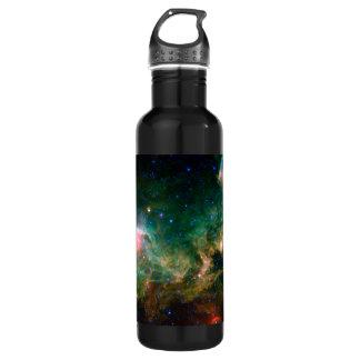 Seagull Nebula NASA Space Stainless Steel Water Bottle