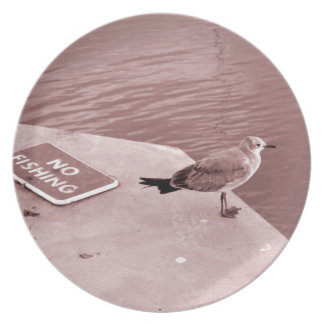 seagull no fishing cant read sepia melamine plate
