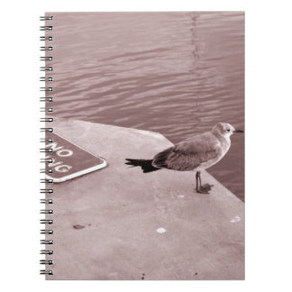 seagull no fishing cant read sepia notebook