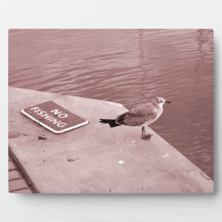 seagull no fishing cant read sepia plaque
