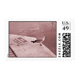 seagull no fishing cant read sepia postage
