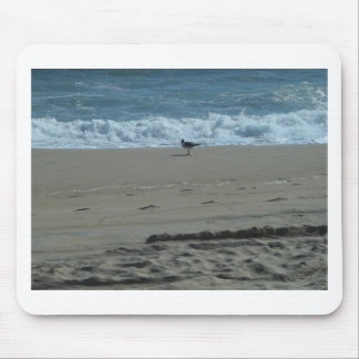 Seagull on a Beach Mouse Pad