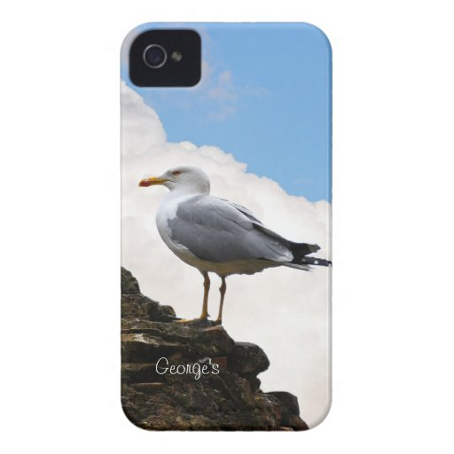 Seagull on a Brick Wall Blackberry Case
