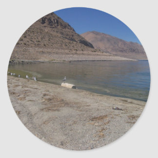 SeaGull on a Log by Walker Lake Classic Round Sticker