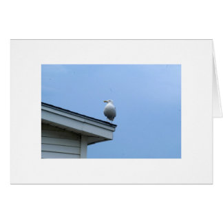 Seagull on a perch stationery note card