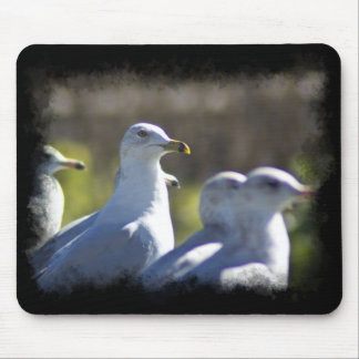 Seagull on a Rail Mouse Pad