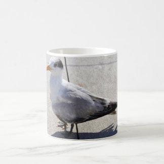Seagull on a Sidewalk Coffee Mug