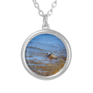 SEAGULL ON A WAVE QUEENSLAND AUSTRALIA ROUND PENDANT NECKLACE