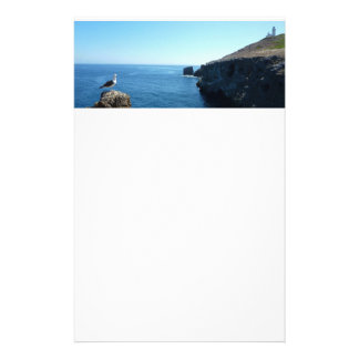 Seagull on Anacapa Island at Channel Islands Stationery